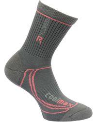 Regatta 2 Season Coolmax Trek Trail Socks Grey Socks