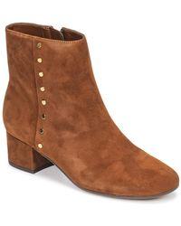 Lauren by Ralph Lauren Enkellaarzen Wharton-boots-casual - Bruin