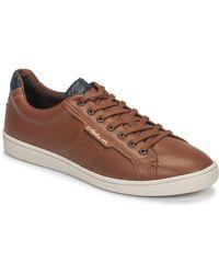 Kickers Lage Sneakers Songo - Bruin