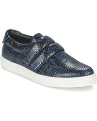Sonia Rykiel Lage Sneakers Spendi - Blauw