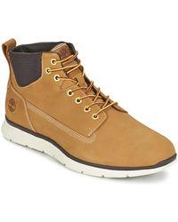 Timberland Sneakers Killington Chukka Wheat - Naturel