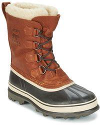 Sorel Snowboots Caribou Wl - Bruin