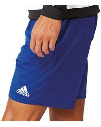 adidas Hosen Parma 16 Short WB - Blau