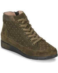 Mam'Zelle Hoge Sneakers Grume - Groen