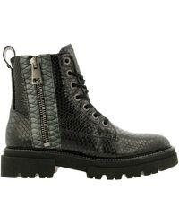 Rehab KIZZ SNA Ankle boot/Bootie Women Bottines - Vert