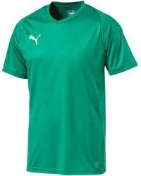 PUMA T-shirt Korte Mouw Liga Jersey Core - Groen