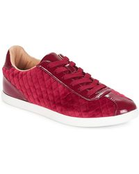 André Lage Sneakers Velvet - Rood
