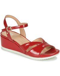Geox Zapatillas D ISCHIA - Rojo