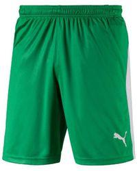 PUMA Korte Broeken Liga Shorts - Groen