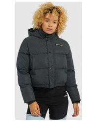 Ellesse Donsjas Monolis Padded Jacket SGG09611 - Bruin