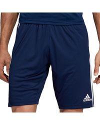 adidas Broek Tiro 19 Training Short - Blauw
