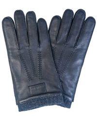 Ted Baker Mxoblokeyxc9m_black Gloves