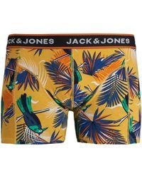 Jack & Jones Jack Jones Boxer 12171647 JACSUMMER ANIMALS TRUNKS STS YOLK YELLOW - Amarillo