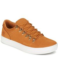 Timberland - Lage Sneakers Adv 2.0 Cupsole Alpine Ox - Lyst