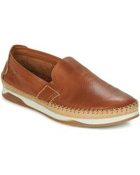 Fluchos Zapatos KENDAL - Marrón
