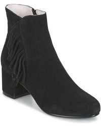 Mellow Yellow Abby Women's Low Ankle Boots In Black
