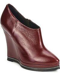 Fabi Ankle Boots FD9627 - Braun