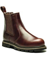 Dickies Fife Bottines de sécurité hommes Chaussures de sécurité en Marron