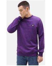 Dickies Sweater New Jersey 40dep1 - Paars