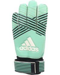 adidas Ace training gardien hommes Gants en bleu