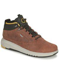 Geox AERANTIS Boots - Marron