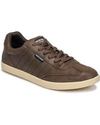 Skechers Lage Sneakers Placer Breacher - Bruin