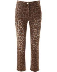 Pinko Jeans 1J10DT Y642 - Braun
