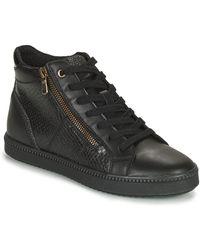 Geox BLOMIEE Chaussures - Noir