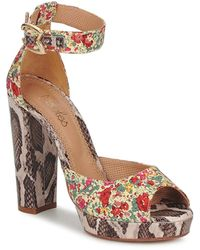 Maloles Piripi Sandals - Multicolour