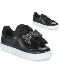 André Lage Sneakers Telamone - Zwart