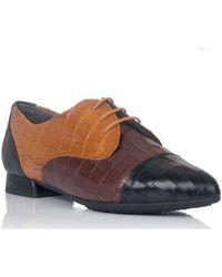 Pitillos Zapatos Bajos 6381 - Amarillo