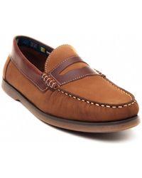 Sachini 67188 Chaussures - Marron