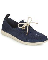 Armistice VOLT ONE Chaussures - Bleu