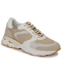 Lumberjack Sneakers Basse Sway - Neutro