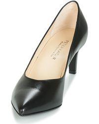 Peter Kaiser Zapatos de tacón NURA - Negro