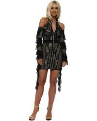 NJ COUTURE Black Luxe Lace Bodycon Dress Dress