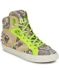 Ash Hoge Sneakers Sonic - Bruin