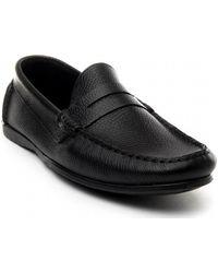 Sachini 67164 Chaussures - Noir