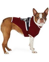 DSquared² Poldo Dog Couture Edition レッド Quebec セーター