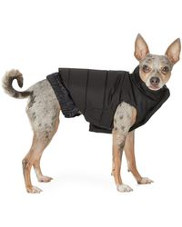 Moncler Genius Poldo Dog Couture Edition ブラック タフタ Mondog ジャケット