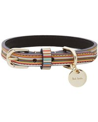 Paul Smith Multicolor Signature Stripe Dog Collar - Black