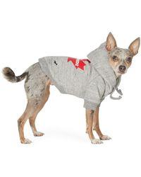 DSquared² Poldo Dog Couture Edition グレー Maple Ottawa フーディ