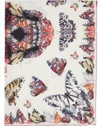 Alexander McQueen Foulard en soie blanc Butterfly Decay Skull