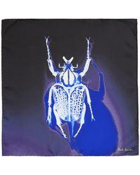Paul Smith ネイビー シルク Photographic Beetle ポケット スクエア - ブルー