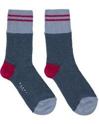 Marni Blue & Pink Striped Socks