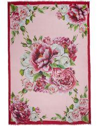 Dolce & Gabbana - Multicolour Peonie Scarf - Lyst