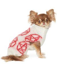 Ashley Williams ホワイト & レッド インタルシア Pentagram ドッグ セーター - マルチカラー
