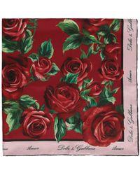 Dolce & Gabbana - レッド And ピンク シルク ローズ スカーフ - Lyst