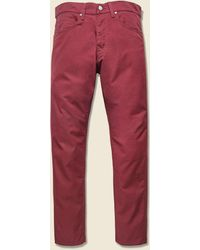 Carhartt WIP Vicious Pant - Mulberry - Red