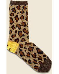 Kapital 84 Yarns Heel Smilie Leopard Socks - Brown
